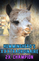 Photo of Hummingherd's XXXtraordinaire