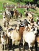 Featured in March issue of Goat Rancher (pages 19 and 32).