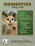Spring/Mar 2020