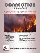 Autumn/Oct 2020